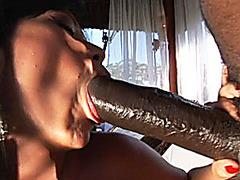 latin hot mom working, there is a spanking anal sex and a great blow mouth